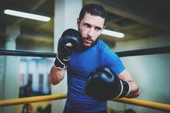 De jonge vechter van de boksermens in bokshandschoenen In dozen doende mens klaar te vechten Het in dozen doen, training, spier,  Stock Afbeeldingen