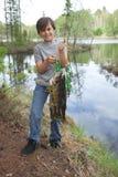 De jonge visser steunt trots langsligger van walleyes Stock Afbeeldingen
