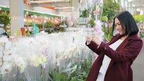 De jonge vrouw als klant het winkelen in bloemwinkel, het kopen bloeit voor hobby en het tuinieren, nemend beeld met mobiel stock videobeelden
