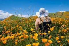 De jonge vrouw die mouwloos onderhemd en strohoed dragen stelt op papavergebied, weg kijkend stock afbeeldingen
