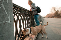 De jonge vrouw kijkt aan de rivier met haar hond in het avond park Stock Fotografie