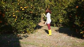 De jonge vrouw loopt in de oranje tuin stock footage