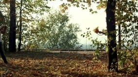 De jonge vrouw met de herfst gaat ter beschikking weg en daling stock video
