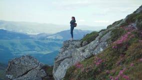 De jonge vrouw met een hoog hierboven rugzak in vrijetijdskledingstribunes op de rand van een bergklip, kijkt rond opgewonden stock videobeelden