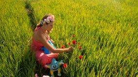 De jonge Vrouw plakt Rode Rozen in Padieveld stock videobeelden