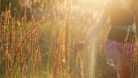 De jonge Vrouw raakt het gras bij Zonsondergang stock footage