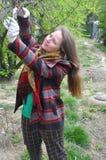 De jonge vrouw snijdt takken op een boom Stock Afbeelding