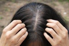 De jonge vrouw toont haar grijze haarwortels stock foto