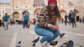 De jonge vrouw zit in het vierkant en voedt de duiven met handenmensen en buildingon stock videobeelden