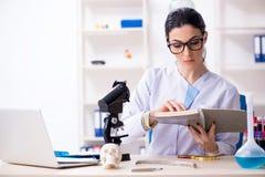 De jonge vrouwelijke archeoloog die in het laboratorium werken stock afbeelding