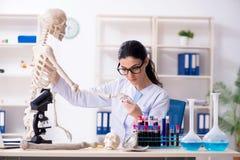 De jonge vrouwelijke archeoloog die in het laboratorium werken stock foto's