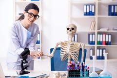 De jonge vrouwelijke archeoloog die in het laboratorium werken royalty-vrije stock foto
