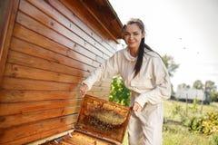 De jonge vrouwelijke imker trekt van de bijenkorf een houten kader met honingraat terug Verzamel honing Imkerijconcept stock afbeeldingen