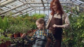 De jonge vrouwelijke tuinman in schort en haar leuke dochter dansen in serre die pret hebben Gelukkige familie, het tuinieren stock videobeelden