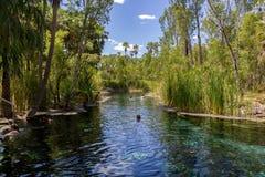 de jonge vrouwen zwemt in de mataranka hete lentes in waterhouserivier, mataranka, noordelijk grondgebied, Australië royalty-vrije stock fotografie