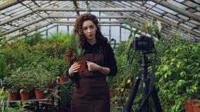 De jonge vrouweneigenaar van broeikas registreert video over het tuinieren voor haar videoblog die zich in serre bevinden en het  stock videobeelden