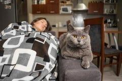 De jonge vrouwenslaap met haar kat, kat wacht wanneer het meisjeskielzog omhoog, kat dichtbij slaapmeisje zit stock afbeeldingen