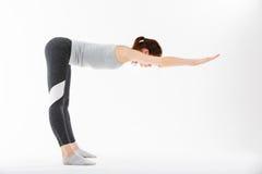 De jonge yoga van de vrouwenoefening Royalty-vrije Stock Fotografie