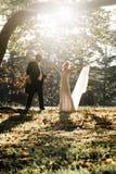 De jongelui in liefde wed koppelt onlangs het ontspannen op gebied in gouden middagzonlicht royalty-vrije stock fotografie