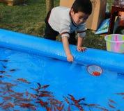 De jongen die in lantaarnfestival vissen in chengdu, China in 2015 Royalty-vrije Stock Fotografie
