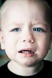 De jongen die van de baby dicht omhooggaand portret schreeuwt Royalty-vrije Stock Foto