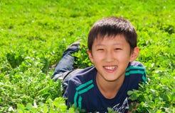 Jongen op het gras Stock Foto's