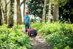 de jongen drijft een rode wagen langs de weg in het bos royalty-vrije stock afbeelding