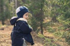 De jongen in een bont-boom hout (1) Stock Foto