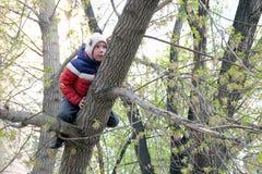 De jongen in een grappige hoed met oren beklom een boom Het thema van de lente stock afbeeldingen