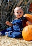 De jongen en de pompoenen van de baby Royalty-vrije Stock Foto