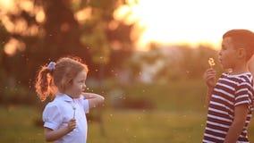 De jongen en het meisje zitten op de bank Looppas rond de park en slagpaardebloemen stock videobeelden