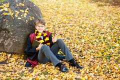 de jongen in glazentribunes in de herfstpark met bladgouden, houdt toverstokje, boekt in zijn handen royalty-vrije stock afbeeldingen