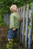 De jongen kijkt door een omheining Stock Foto