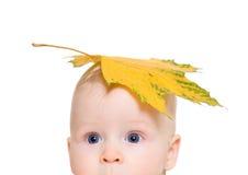 De jongen met een esdoornblad op het hoofd Royalty-vrije Stock Foto's