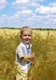 De jongen op het gebied Royalty-vrije Stock Afbeelding