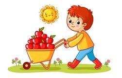De jongen rolt een kruiwagen met appelen stock illustratie