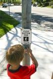 De jongen schakelt verkeerslichten in Stock Foto's