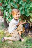 De jongen sneed een bos van druiven stock afbeelding