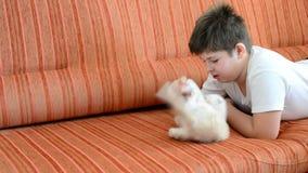 De jongen speelt met een katje liggend op rode laag stock videobeelden