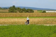 De Jongen van Amish op Autoped. stock afbeeldingen