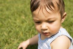 De jongen van de baby in het gras Royalty-vrije Stock Foto's