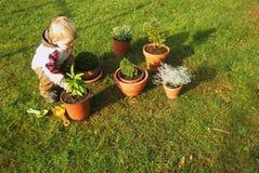 De jongen van de baby het tuinieren Royalty-vrije Stock Foto's