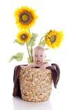 De jongen van de baby met bloemen royalty-vrije stock foto