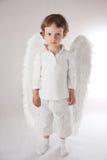 De jongen van de engel Stock Foto's