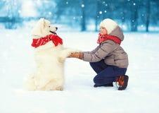De jongen van de Kerstmis het gelukkige tiener geeft spelen met witte Samoyed-hond op sneeuw in de winterdag, positieve hond poot stock foto's