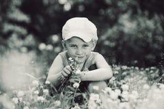 De jongen van de zomer onder de klaver Royalty-vrije Stock Afbeelding