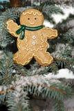 De jongen van het de gemberbrood van Kerstmis Stock Afbeeldingen