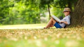 De jongen zit door de boom op een zonnige dag en leest een boek stock videobeelden