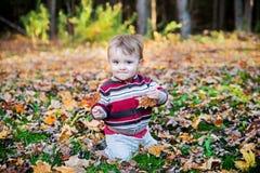 De jongen zit het Houden van een Esdoornblad in Elke Hand stock fotografie