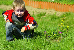 De jongen zit op een gras royalty-vrije stock afbeelding